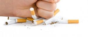 Des cigarettes écrasées par un fumeur