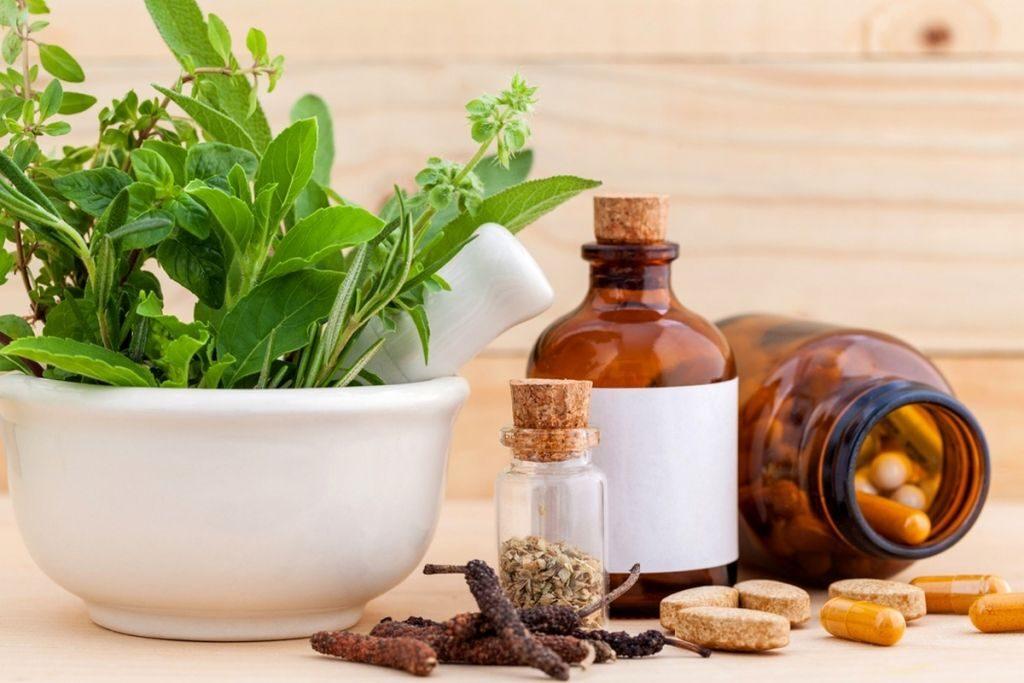 des pots de différents plantes médicales