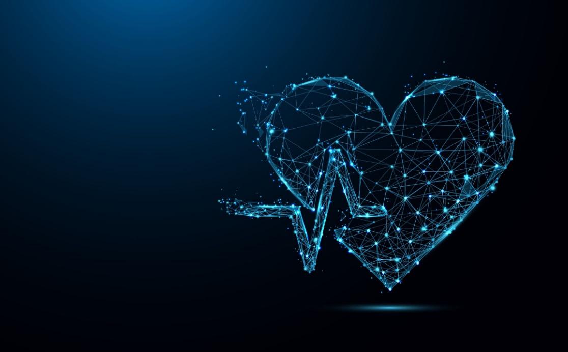 rythme cardiaque