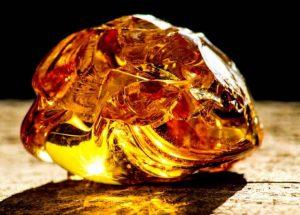 Une gemme d'ambre