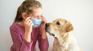 Un chien et une enfant masquée